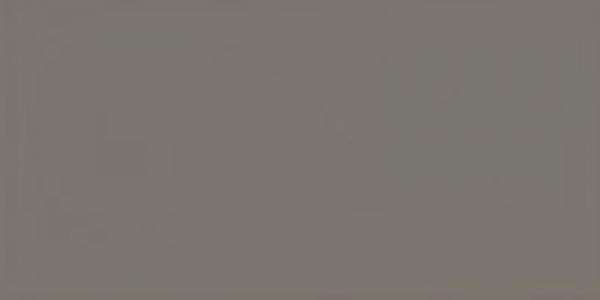 Equipe Evolution Gris Oscuro 7,5 x 15 cm
